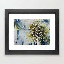 Marguerites Framed Art Print