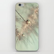 dandelion mint iPhone Skin