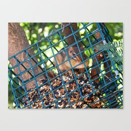 This could be a problem... Canvas Print