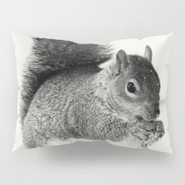 Squirrel Animal Photography Pillow Sham