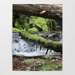 Cascades 646 Pacific Northwest Waterfall Poster