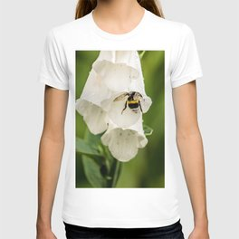 Bumblebee in the campanula T-shirt