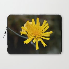 Two Insects Laptop Sleeve