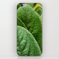 silence of the lambs iPhone & iPod Skins featuring Lambs Ear by Christian Gholson