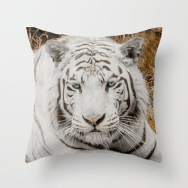 WHITE TIGER GAZE Throw Pillow