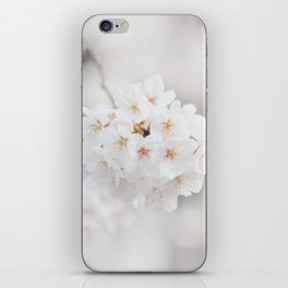 Springy iPhone Skin
