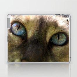 Cat's Eye Spy Laptop & iPad Skin
