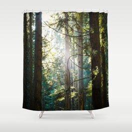 Luminosity Shower Curtain