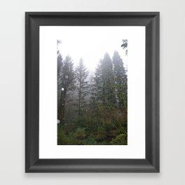 Rainy Foggy Day in the Portland Forest Framed Art Print