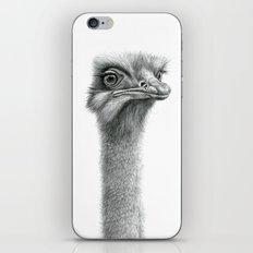 Funny Ostrich SK060 iPhone & iPod Skin