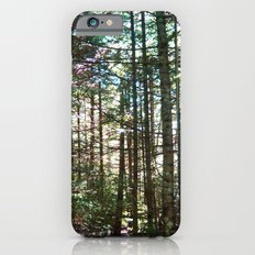 Rainbow Reflection iPhone 6s Slim Case