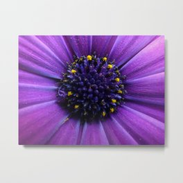 The Perfect Flower Metal Print