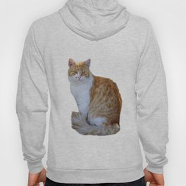red cat Hoody