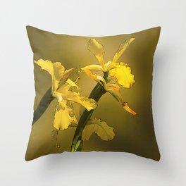 Golden Yellow Daffodils Throw Pillow