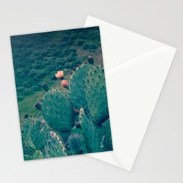 Cactus - Prickly Pear Flowers in a Green Valley Stationery Cards