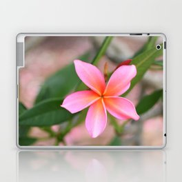 Blushing Plumeria Laptop & iPad Skin