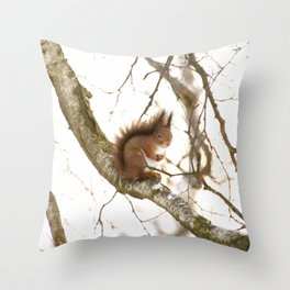 Little Squirrel On The Branch - Autumn Scene #decor #society6 #buyart Throw Pillow