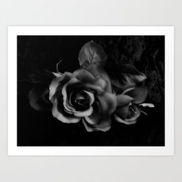 Black Rose on Black Floral Decor A221 Art Print