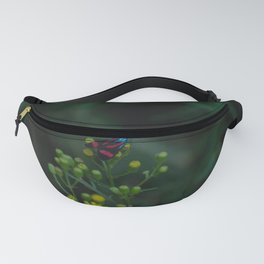 Flower photography by Gabriel Fanny Pack