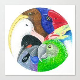 Squishy Squashy Birds Canvas Print