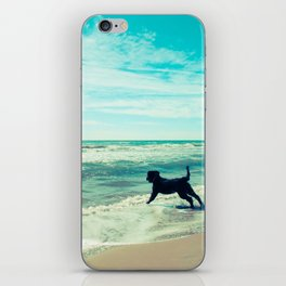 Fetch iPhone Skin