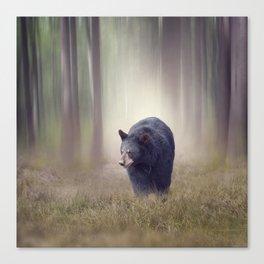 Black bear walking in the woods Canvas Print