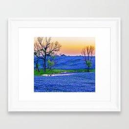 Bluebonnets Field Framed Art Print