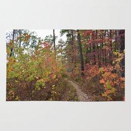 A Walk in the Fall Rug