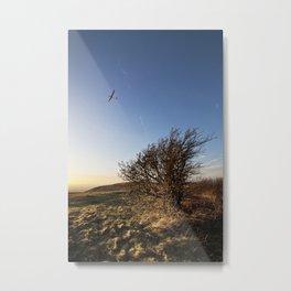 Glider Metal Print