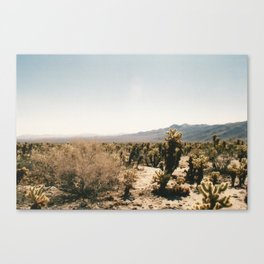 Desert Dreams 1 Canvas Print