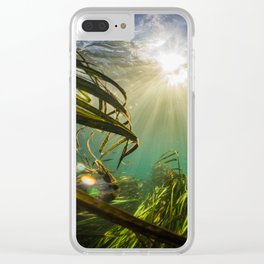 Through the Wild Clear iPhone Case