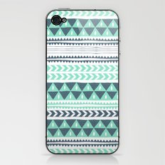 Winter Stripe iPhone & iPod Skin