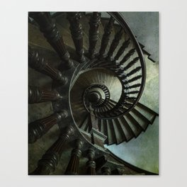 Brown wooden spiral staircase Canvas Print