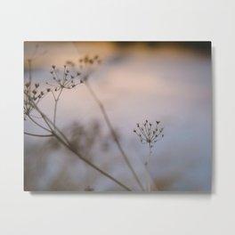 golden hour flora Metal Print