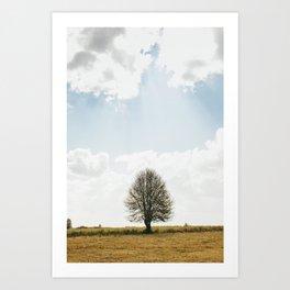 The solitary Burmese tree Art Print