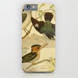 Vintage Print - The Birds of Australia (1891) - Australian Kingfishers iPhone Case