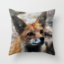 Gentle Fox Throw Pillow