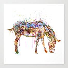 Zebra watercolor painting Canvas Print