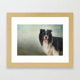 Drawing Dog breed Border Collie Framed Art Print