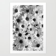 Daisy Chaos in Black and White Art Print