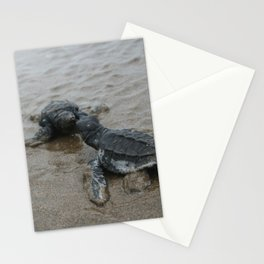 baby sea turtle kisses Stationery Cards