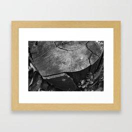 Love in Nature Framed Art Print