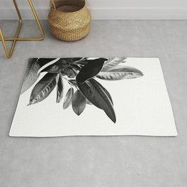 Grandiflora II - bw Rug