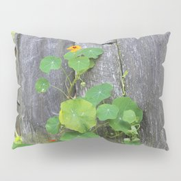 The Garden Wall Pillow Sham