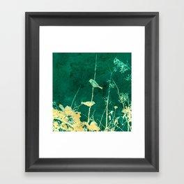 Yellow Birds on Vine Framed Art Print