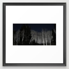White Trees Framed Art Print