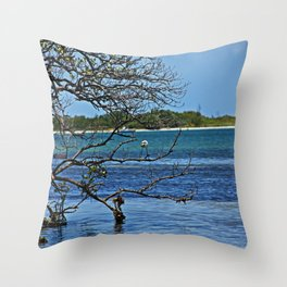 St. Pete Waters Throw Pillow