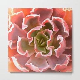 Living Coral Succulent Metal Print