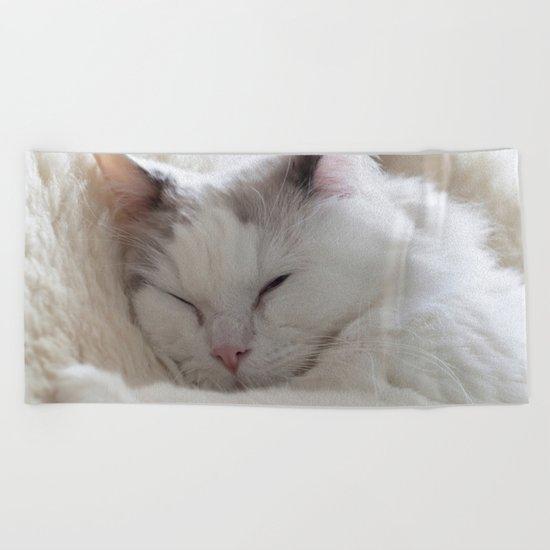 Ragdoll Cat Cuddles Beach Towel