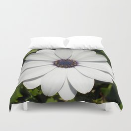 Beautiful Blossoming White Osteospermum  Duvet Cover